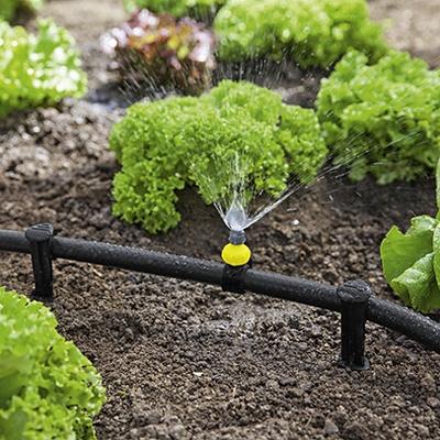 园艺:花园灌溉