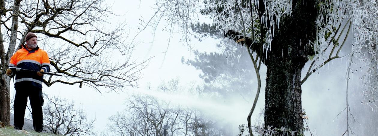 高冷的德国人:用洗车神器,造一场绝美雾凇