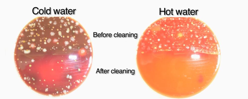 冷热水清洗病菌数量对比