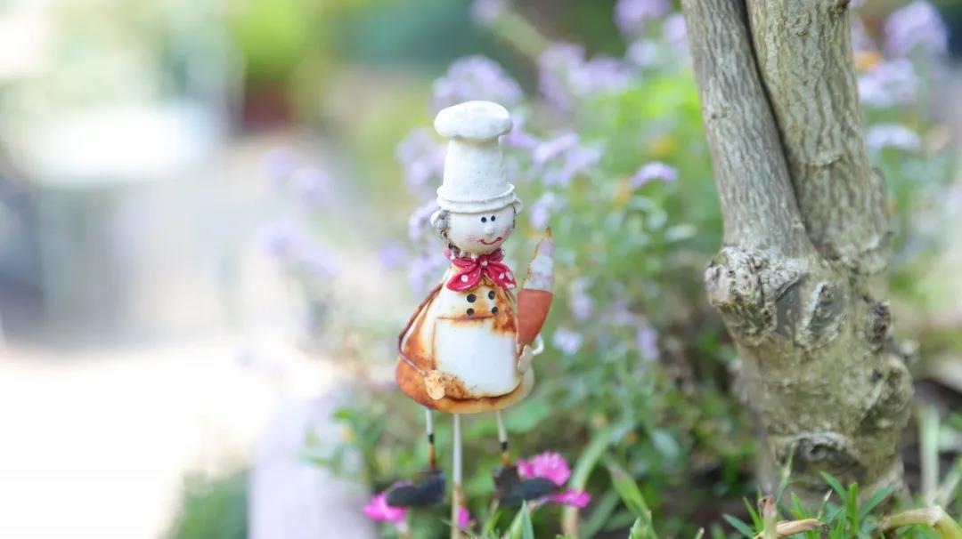 夏日庭院清洁方案在哪里?卡赫为你献上良招妙计!